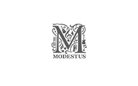 modestusmanagement.nl
